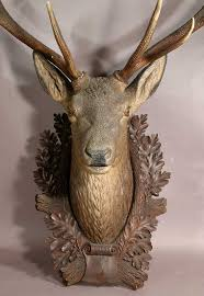 carved stag head 165 best antique deer heads and others antique animal heads images
