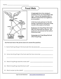 Activity 6 Food Web Worksheet Worksheets for all | Download and ...