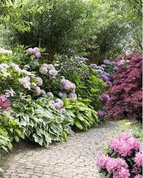 kit mon jardin d ombre 7 plantes backyard garden garden styles shade garden