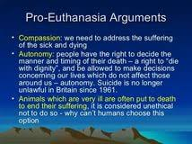 pro euthanasia essay pro euthanasia