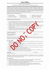 Cv Examples Executive Senior Management Cv Examples Cv Info