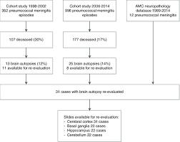 Flow Chart Patient Selection Download Scientific Diagram