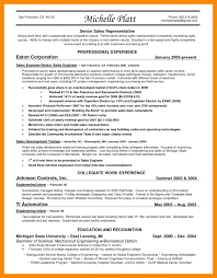 Resume Examples For Sales Representative Resume Sales Representative Resume Sample 23