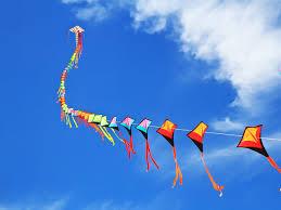 मप्र में मांझा पर लगा प्रतिबन्ध ; नहीं उड़ा पाएंगे  पतंग