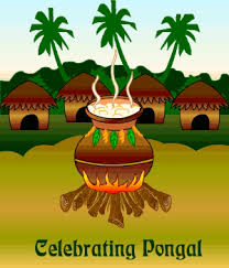four days of pongal celebartion here is a brief essay about four days of pongal festival and celebrations