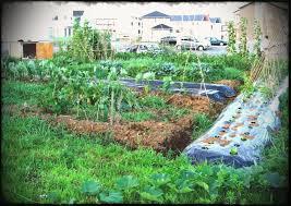 backyard design landscaping. Fullsize Of Chic Kitchen Small Vegetable Garden Ideas Designs Design Uk Basiclandscape Plans Wallpaper Home Backyard Landscaping