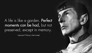 Leonard Nimoy Quotes Gorgeous 48 Leonard Nimoy Quotes QuotePrism