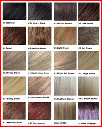 This Handy Chart Makes Choosing A Hair Color So Easy Beige