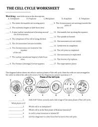 1352 best Science Worksheets images on Pinterest | Science ...