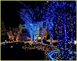 outdoor lighting decorations. Blue Led Outdoor Christmas Lights Lighting Decorations