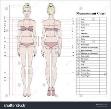 Full Body Measurement Chart Royalty Free Woman Body Measurement Chart Scheme 486273028 Stock
