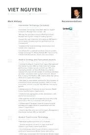 Sample Security Consultant Resume Technology Consultant Resume Thrifdecorblog Com