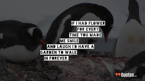 Penguin Love Quotes Mesmerizing 48 Quotes About Love And Life And Happiness To Inspire Your Day