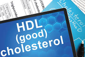 Hdl Cholesterol How Much Is Enough Harvard Health