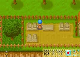 Maybe there will be more but it might take a while. Harvest Moon Friends Of Mineral Town Download Gamefabrique