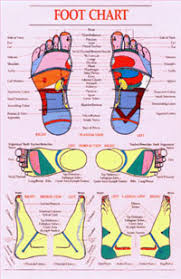 Reflexology Charts Jasonkellyphoto Co