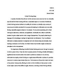 example of critical thinking essays critical essay sample manufacturing essay importance assignment