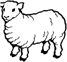 Small Picture Year of sheep coloring pages for kids gobel coloring page