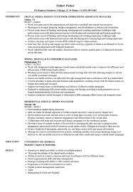 Media Digital Manager Resume Samples Velvet Jobs
