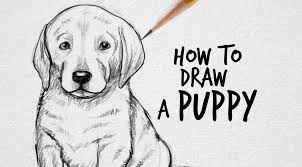 Small Picture How to draw a puppy Drawing Factory