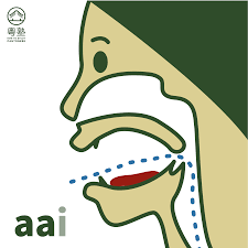 Cantonese Pronunciation Guide 78 Initials And Finals