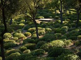 Small Picture 117 best Hedges and topiary images on Pinterest Gardens