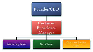 customer experience manager eight marketing organizational structures aviation business