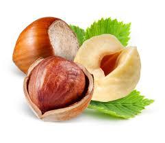 Image result for Hazelnuts
