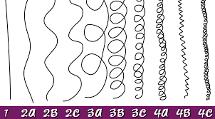 4c Chart What Are 4a 4b And 4c Hair Types Answers And Picture