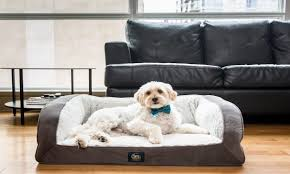 small dog furniture. Best Dog Beds For Small Dogs Furniture