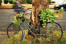Retired bike as a garden