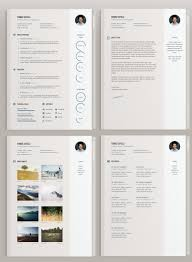 42 Impeccable Resume Templates Word Psd Indd Ai Download Psd