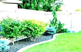 backyard design app backyard design app free yard planner seemly garden design app free landscape design