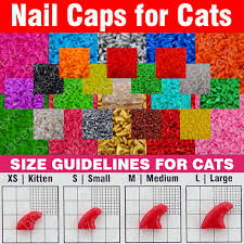 Cat Nail Cap Size Chart Us 5 64 120pcs Soft Nail Caps For Cats 6x Adhesive Glue 6x Applicator Xs S M L Paw Claw Cover Lot Cat In Cat Grooming From Home