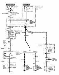 Fig diagram