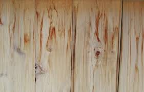 remove water stain from ceiling. Perfect Water Removing Water Stains From Cedar This Old House And Remove Stain Ceiling