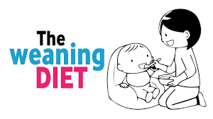 Weaning Diet Chart The Weaning Diet