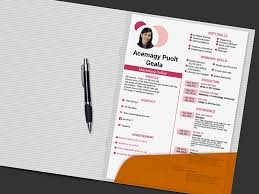 Meetdev Creative Cv Template 3 For Designer In Pink