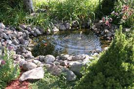 60 backyard pond ideas photos home