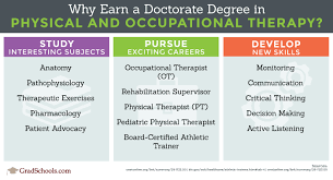 Online Doctor Of Physical Therapy And Occupational Therapy Programs
