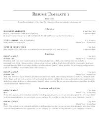 Executive Resumes Templates Extraordinary Harvard Resume Template Resume Template Executive Resume Template