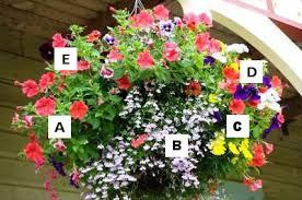 Container Herb Garden Ideas Vegetables Gardens For Shade Areas Container Garden Ideas Full Sun