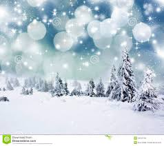 Christmas Background With Snowy Fir Trees Royalty Free Stock Photo ...