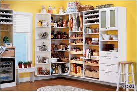 For Organizing Kitchen Pantry Best Wood For Kitchen Pantry Shelves Kitchen Storage Cabinets