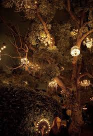 luxury 25 best california dreamin images on los angeles cali for chandelier tree los