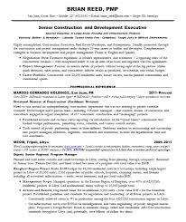 F And B Manager Sample Resume Adorable Pmp Resume Examples Program Management Resume Examples And Job
