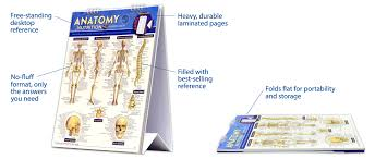 Body Systems Chart Human Body Systems Flip Chart Quick Study