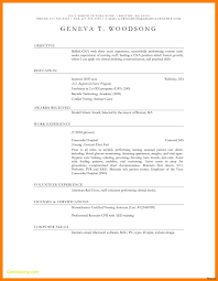 Free Downloadable Resume Builder Example Of Free Resume Download