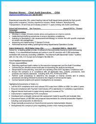 Internal Audit Job Description For Resume Free Resume Example