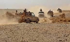 استمرار المعارك بين الجيش واللجان الشعبية وقوات هادي والتحالف في مأرب